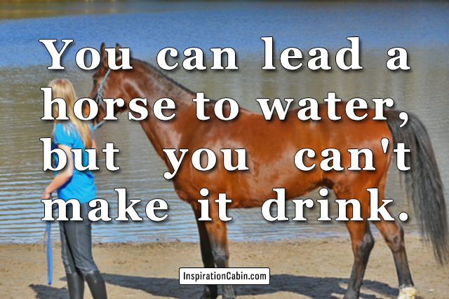 You can lead a horse to water, but you can't make it drink.