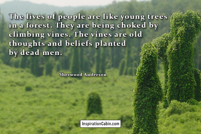 The lives of people are like young trees in a forest. They are being choked by climbing vines. The vines are old thoughts and beliefs planted by dead men.