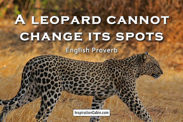 A leopard cannot change its spots.