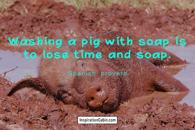 Washing a pig with soap is to lose time and soap.