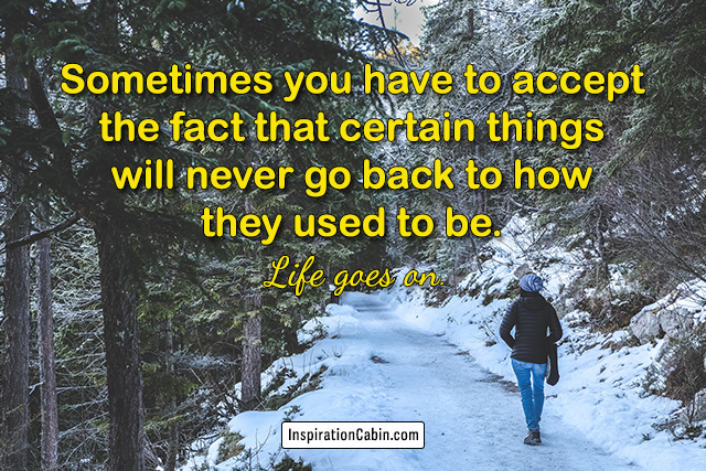 Sometimes you have to accept the fact that certain things will never go back to how they used to be. Life goes on.
