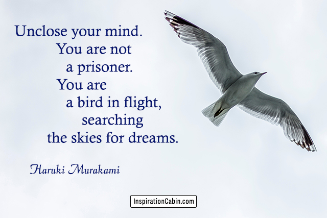 Unclose your mind. You are not a prisoner. You are a bird in flight, searching the skies for dreams.