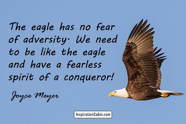The eagle has no fear of adversity. We need to be like the eagle and have a fearless spirit of a conqueror!