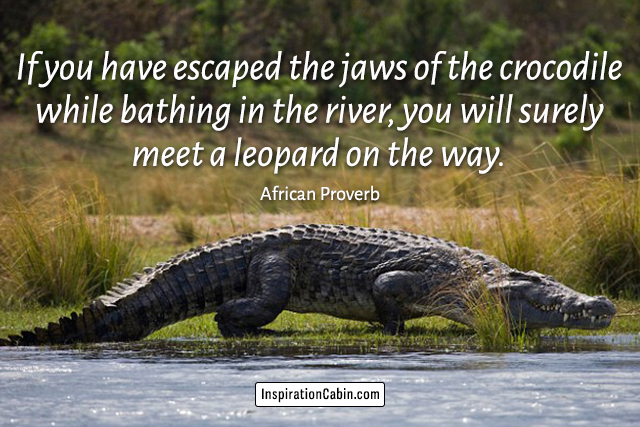 If you have escaped the jaws of the crocodile while bathing in the river, you will surely meet a leopard on the way.