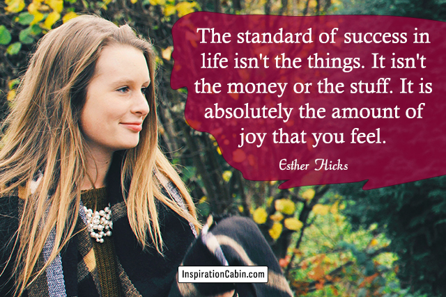 The standard of success in life isn't the things. It isn't the money or the stuff. It is absolutely the amount of joy that you feel.