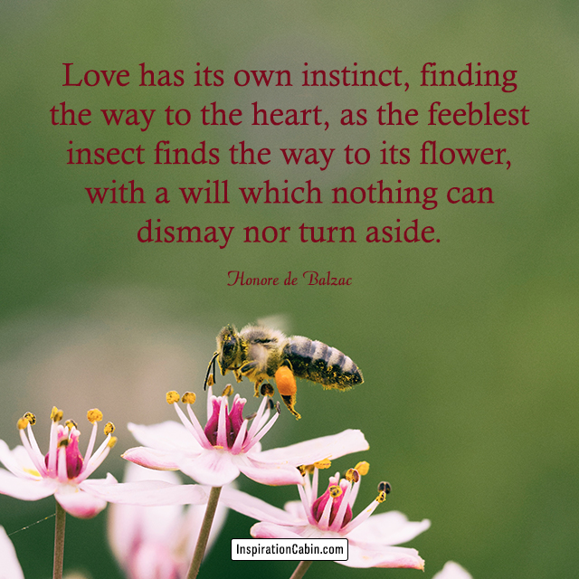 Love has its own instinct, finding the way to the heart