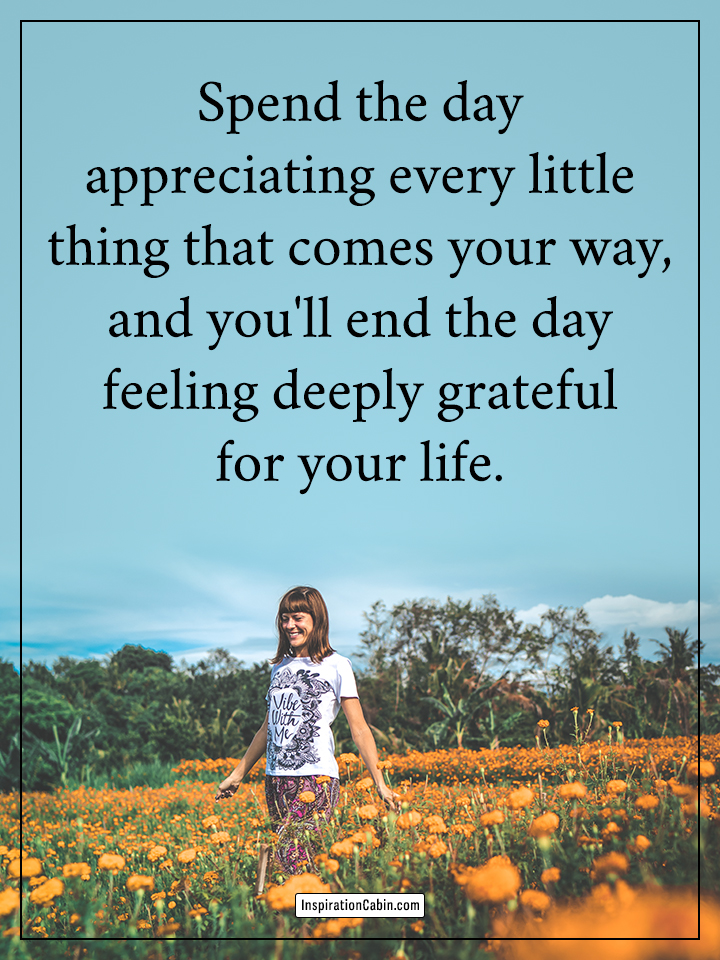 appreciating every little thing that comes your way