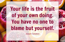 Your life is the fruit of your own doing.